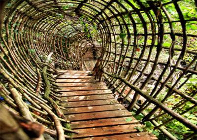 33coop Disseny d'ecosistemes humans sostenibles