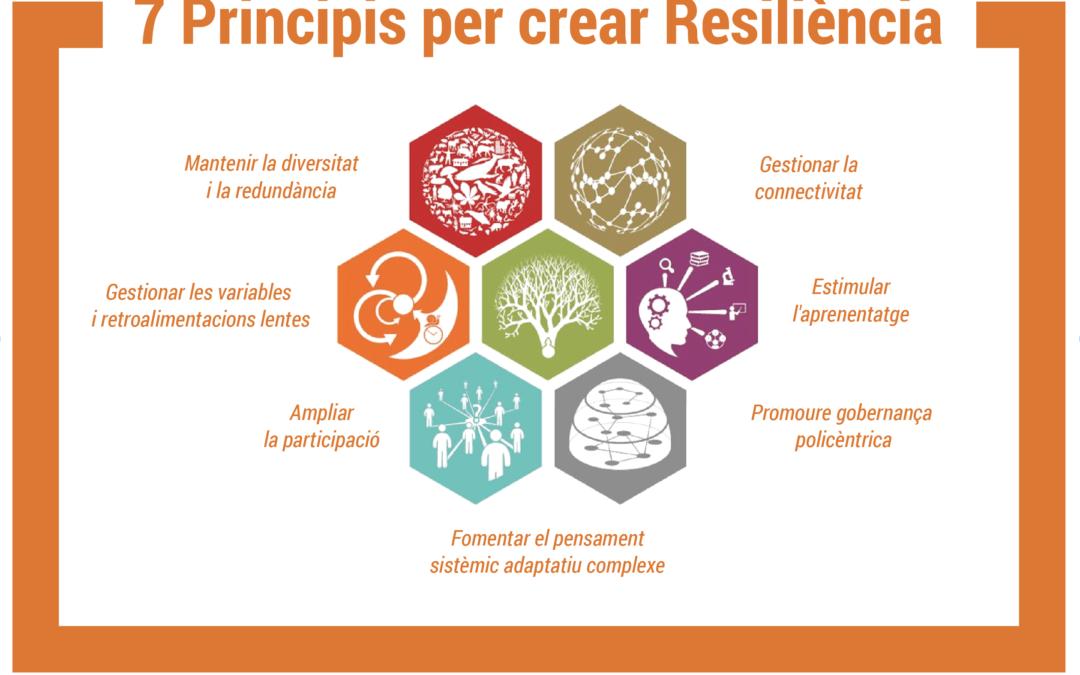 7 Principis per crear Resiliència