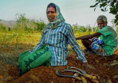 Assecador solar per a la sobirania alimentaria a la Índia rural