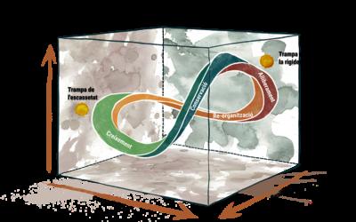 Cicle de la Resiliència / Infinite Resilience Cercle